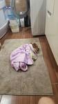 Уснула после купания